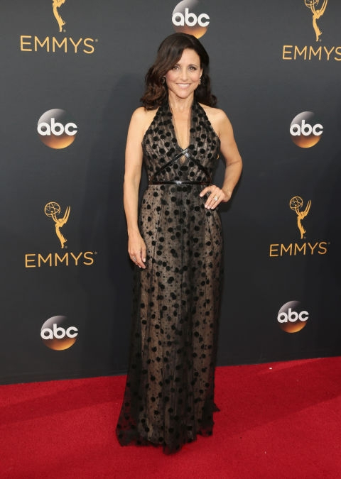 Julia Louis Dreyfus - Carolina Herrera