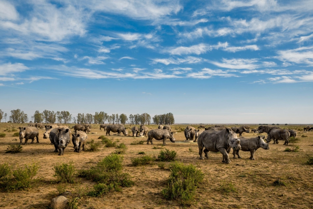 Photograph by BRENT STIRTON