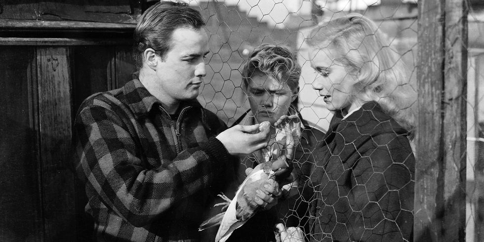1954 -  On The Waterfront