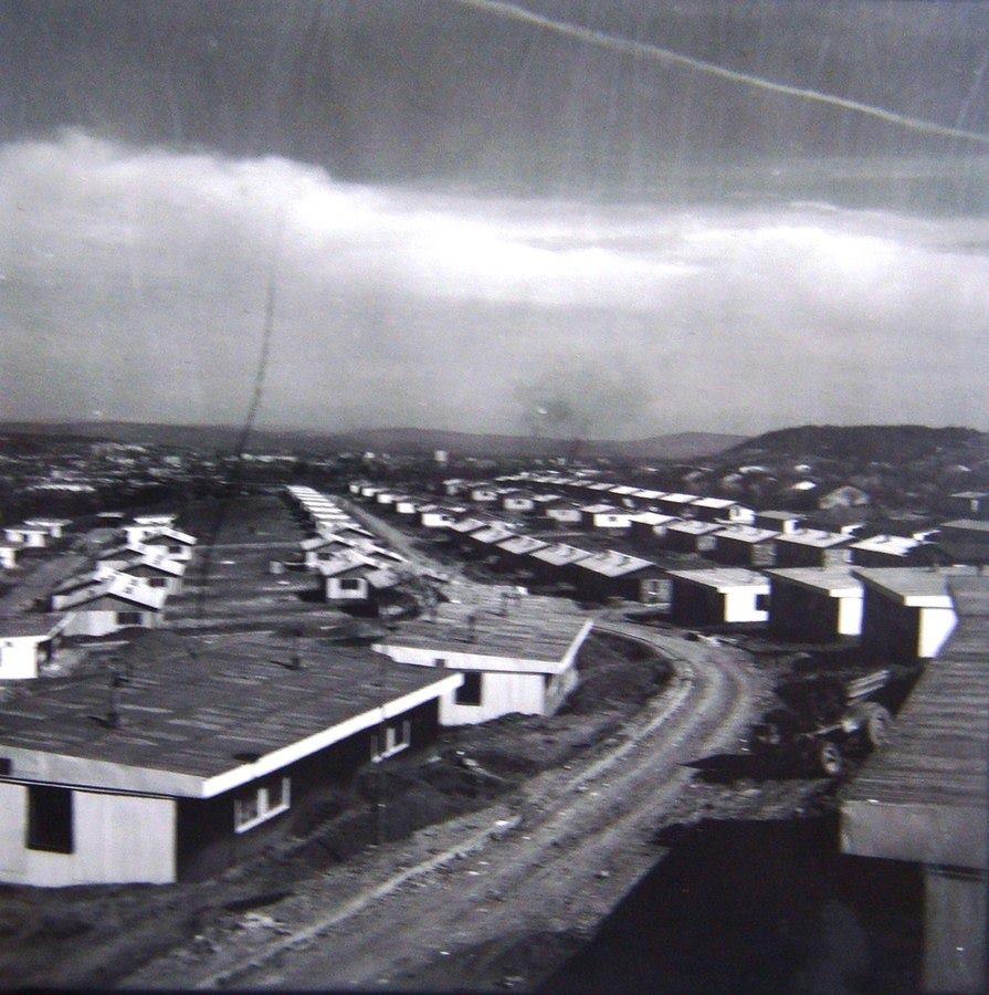 1964 - Жданец