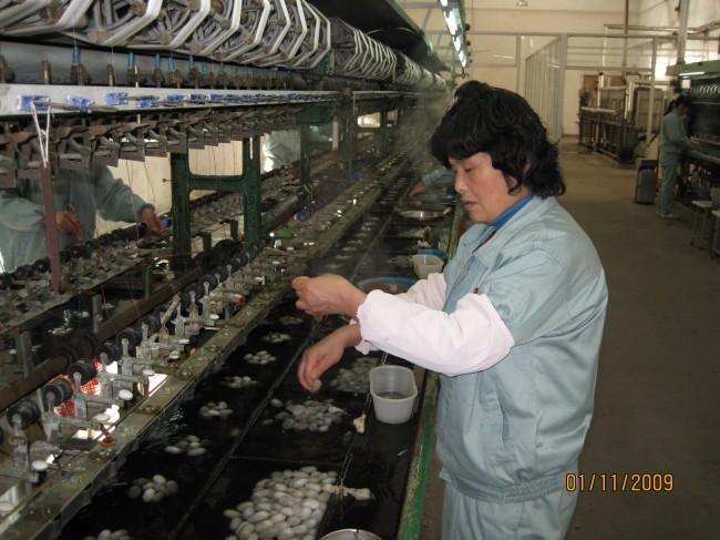 Фабрика за свила