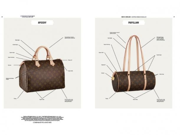 Анатомска шема на култната чанта