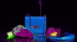 Ванг преферира мини чанти