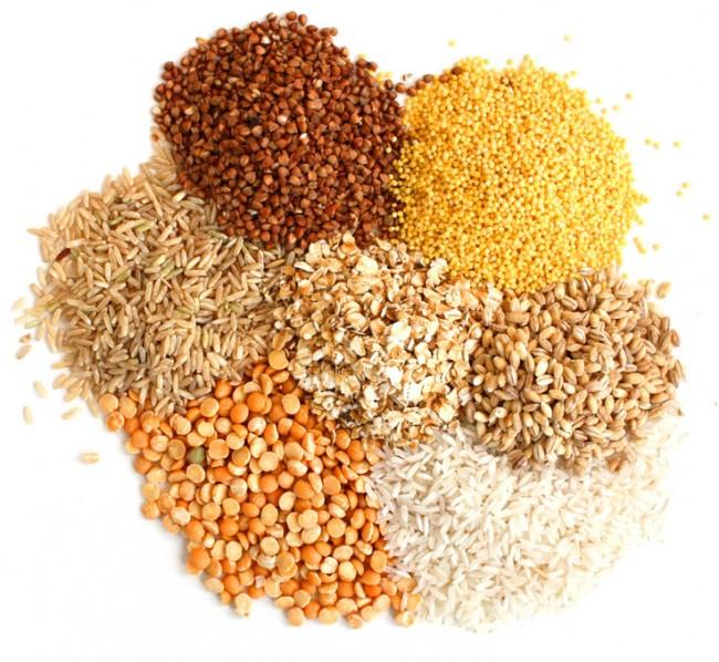 discover-grains